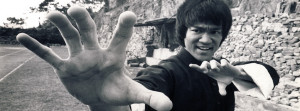 Bruce Lee Fighting Facebook Cover