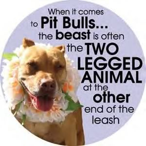 All Graphics » stop pit bull abuse