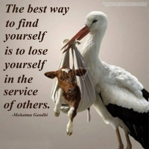 ... Best Way To Find Yourself Is To Lose Yourself In The Service Of Others