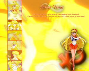 Sailor Venus Wallpaper by stellinabg