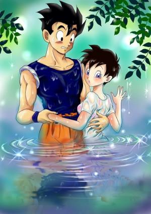 Gohan And Videl Dragon Ball...