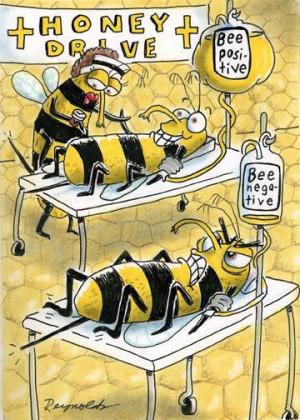Honey Drive. Bee Positive. Bee Negative