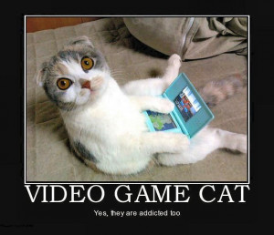 Video Game Cat