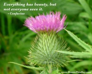 Inspirational Quotes - Inspirational Sayings
