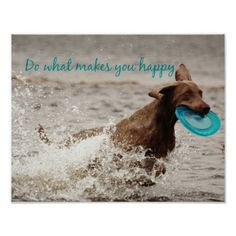 Weimaraner and Happy Quote Poster #weimaraner #happy