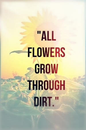 quote #flowers #sunflower #grow #dirt #writing #life #creative #art