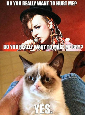 Grumpy Cat Meme - Boy George