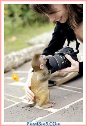 Cute Monkey...