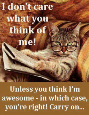 ... Morning Wishes - Images, Funny Morning Quotes -Images, Funny Morning