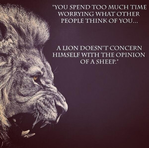 Lion's do not lose sleep over the opinion of sheep