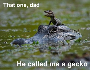 ... one dad – he called me a gecko – funny baby crocodile alligator