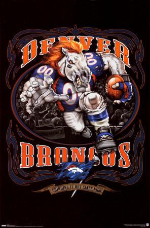 broncos fan Denver Broncos
