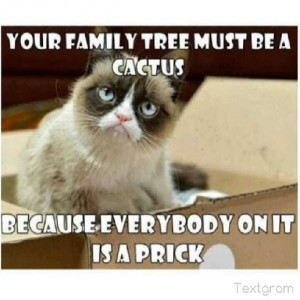 meme sarcastic funny grouchy cat for more hilarious memes and funny ...