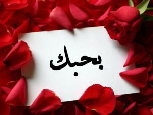 love you in arabic i love you in arabic i love you in arabic