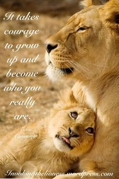lioness quotes who you really are more lionesses quotes leo lions ...