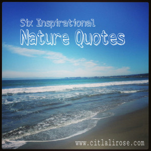 Citlali Rose 6 Inspirational Nature Quotes