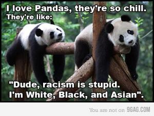 Pandas aren't racist