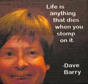 DAVE BARRY QUOTE - Printed Patch - Sew On - Vest, Bag, Backpack ...