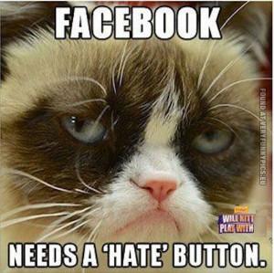Facebook Grumpy Cat Quotes