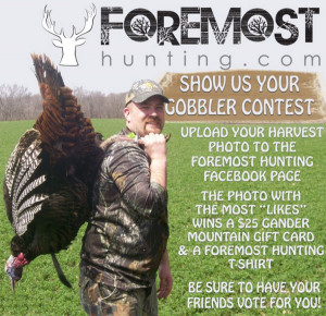 Turkey Hunting Quotes Turkey hunting directory