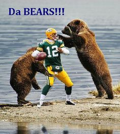bears packers funny pictures - Google Search More