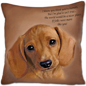Funny Dachshund Quotes