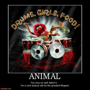 Animal rocks.. Cuz he's the most cool Muppet