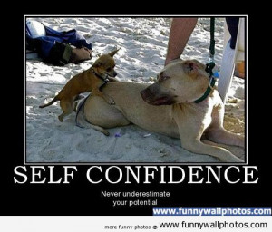Funny Pictures Confidence Quotes Self Girl