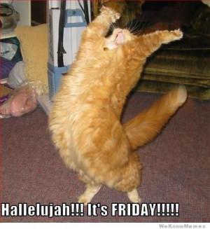 Hallelujah! It's Friday! cat meme
