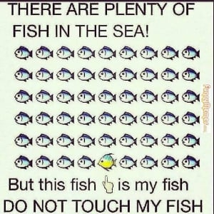 animal memes plenty of fish in the sea but this fish is my fish do not ...