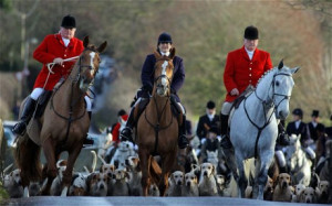 The lack of progress on the hunting issue is likely to dismay pro ...