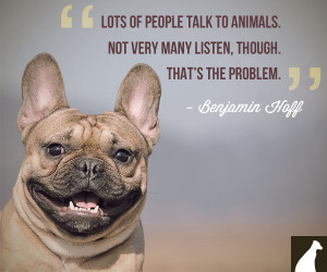 Benjamin Hoff dog quote