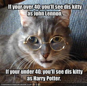 DAMN! Cats are Funny - animal-humor Photo