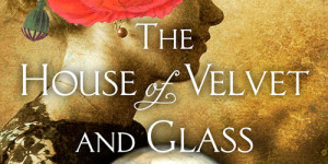 Perfect Passages: 'The House of Velvet and Glass' by Katherine Howe