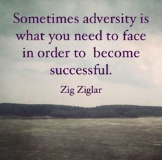 Adversity quote zig ziglar James Malinchak Big Money Speaker Quote Box ...
