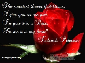 ... .org/quotes/rose-quotes/for-you-its-a-rose-for-me-its-my-heart