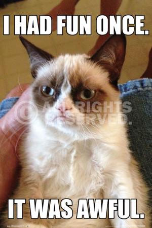 Grumpy Cat Quotes Titanic