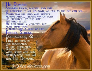 Horse Quotes And Sayings (32)