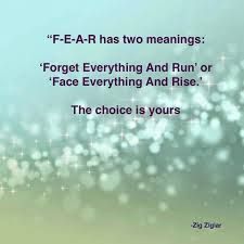 fear has two meanings - Google Search