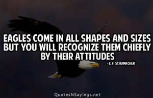 Eagle Quotes and Sayings