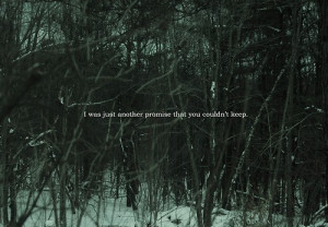 forest, nope, promise, quotes, relationship, sad, trees, words