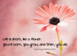 Flower quote via www.inspiringquotes.tumblr.com