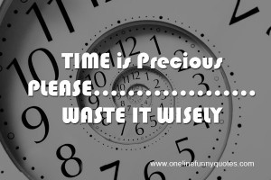 Time is precious, please waste it wisely.