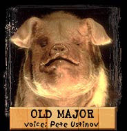 Old Major - The most well-respected animal on the farm. Humans were ...