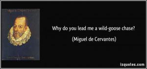 Why do you lead me a wild-goose chase? - Miguel de Cervantes