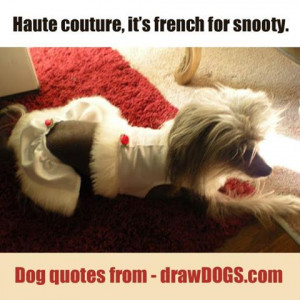Cute Dog Best Friend Quotes See all of the over 110 dog