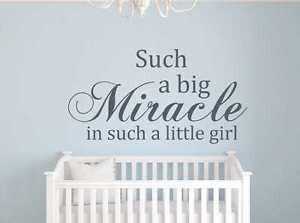 Big-Miracle-quote-Vinyl-Sticker-nursery-room-Bedroom-Wall-Art-decal ...