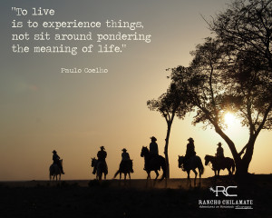 Quotes About Horseback Riding