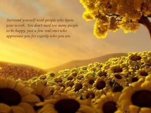 Sunflowers in heaven....
