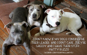 Pit Bull Dog Quotes